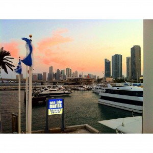 View from the Stereo Productions Sunset Yacht Party